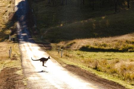 Australian Scenic View